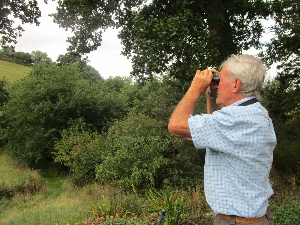 Could you be a parish Wildlife Warden?