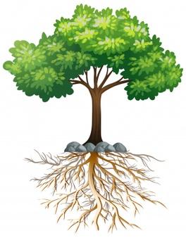 Precious Trees Need Preserving